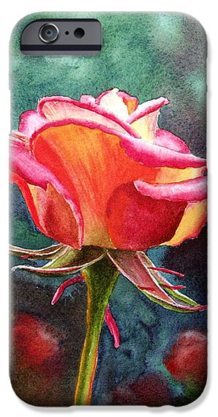 Pink Roses iPhone Cases - Morning Rose iPhone Case by Irina Sztukowski