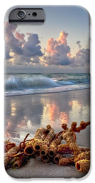 Morning Surf iPhone Case by Debra and Dave Vanderlaan