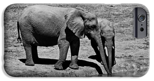 Elephant iPhone Cases - Mother Elephant and Baby at Watering Hole iPhone Case by Mountain Dreams