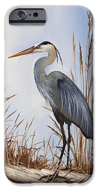 Driftwood iPhone Cases - Natures Gentle Beauty iPhone Case by James Williamson