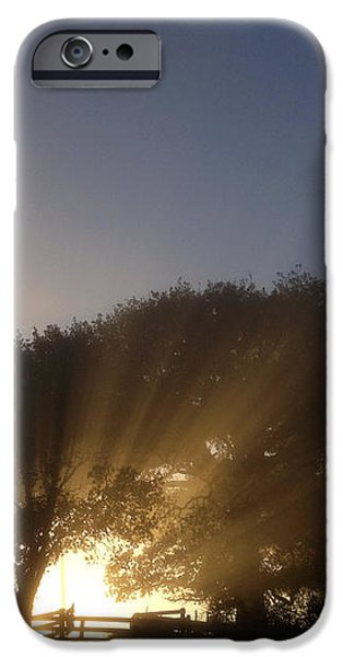 New beginning iPhone Case by Les Cunliffe