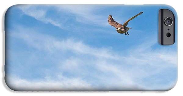 Hawk iPhone Cases - Nice Flying Weather iPhone Case by Bill  Wakeley