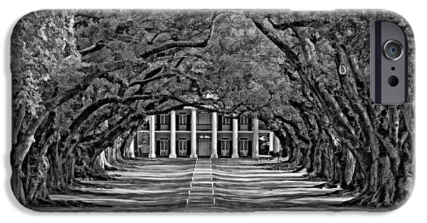 Oak Alley Plantation iPhone Cases - Oak Alley bw iPhone Case by Steve Harrington