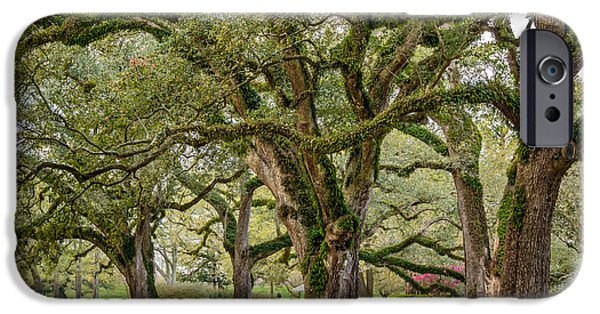 Oak Alley Plantation iPhone Cases - Oak Alley Plantation 2 iPhone Case by Steve Harrington