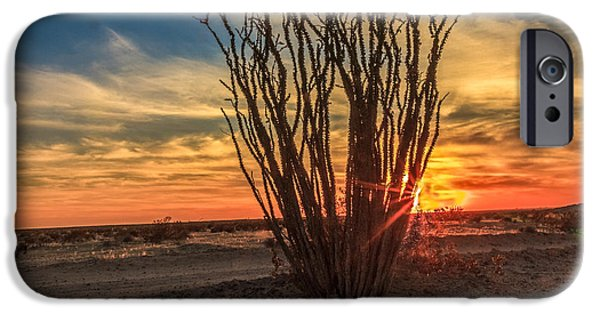 Haybale iPhone Cases - Ocotillo Sunset iPhone Case by Robert Bales