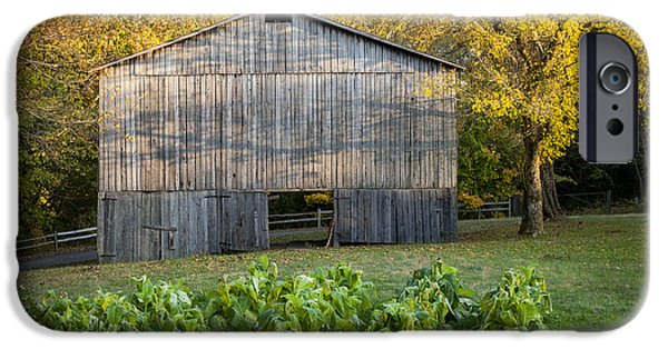 Natchez Trace Parkway iPhone Cases - Old Tobacco Barn iPhone Case by Brian Jannsen