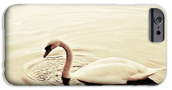 Swan iPhone Cases - On Golden Pond iPhone Case by Sharon Lisa Clarke