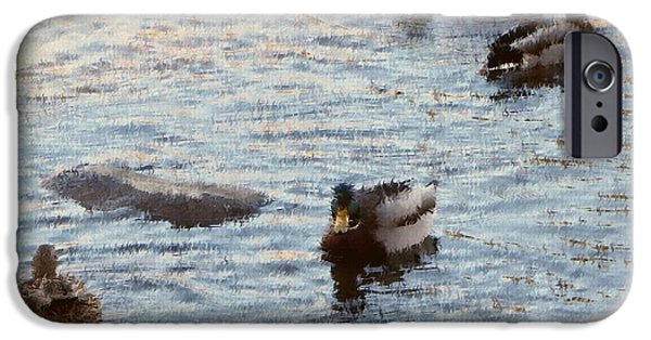 Matting iPhone Cases - Out For a Swim Painting iPhone Case by Bobbee Rickard