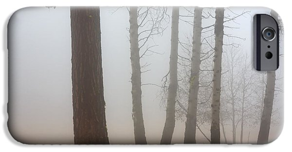 Fog Mist Photographs iPhone Cases - Out of the Fog iPhone Case by Mike  Dawson
