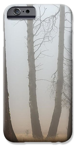 Out of the Fog iPhone Case by Mike  Dawson