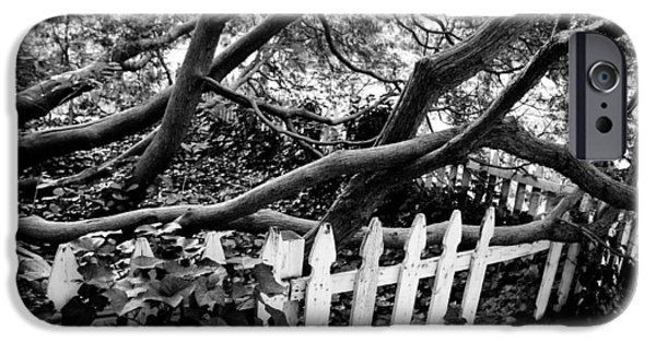 Cora Wandel iPhone Cases - Overflowing A Picket Fence iPhone Case by Cora Wandel