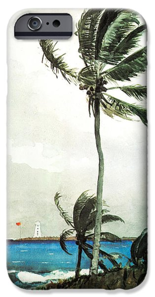 Beach Landscape Drawings iPhone Cases - Palm Tree Nassau iPhone Case by Celestial Images