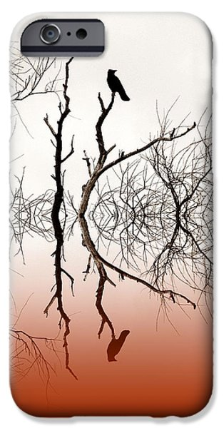 Reflecting Trees iPhone Cases - Perched iPhone Case by Sharon Lisa Clarke