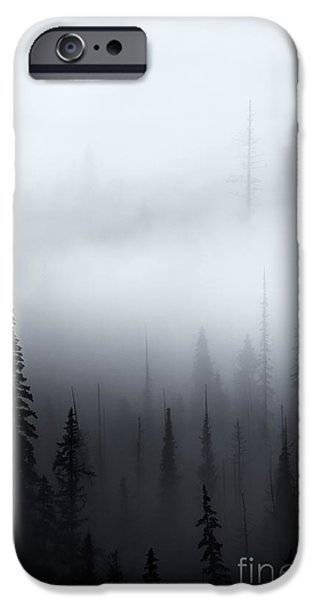 Forest iPhone Cases - Piercing the Clouds iPhone Case by Mike  Dawson