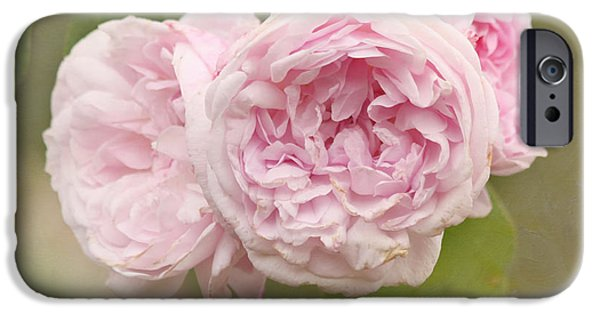 Innocence iPhone Cases - Pink Blush iPhone Case by Kim Hojnacki