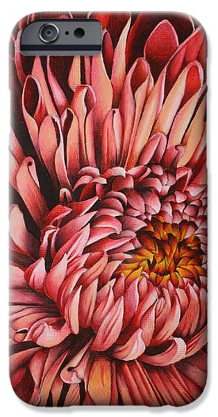 Flora Drawings iPhone Cases - Pink Mum iPhone Case by Bruce Bley