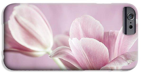 Botanical Photographs iPhone Cases - Pink tulips iPhone Case by Elena Elisseeva