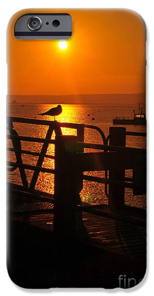 Catherine Reusch Daley iPhone Cases - Plymouth Harbor Sunrise iPhone Case by Catherine Reusch  Daley