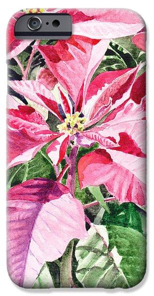 Christmas Greeting iPhone Cases - Poinsettia iPhone Case by Irina Sztukowski