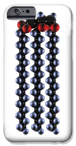 Biochemical iPhone Cases - Polyunsaturated Fat Molecule iPhone Case by Bo Veisland