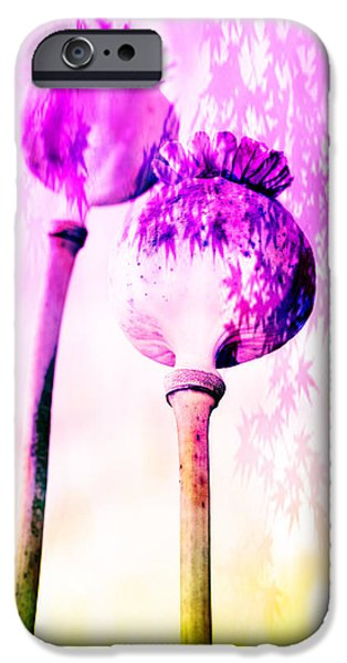 Agriculture Mixed Media iPhone Cases - Poppy buds iPhone Case by Toppart Sweden
