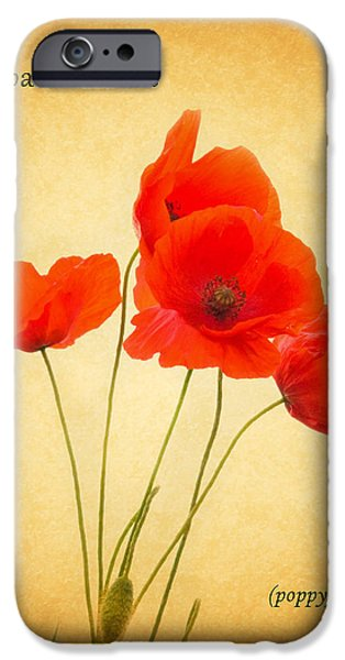 Flora Photographs iPhone Cases - Poppy iPhone Case by Mark Rogan