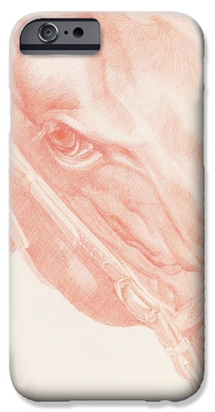 Mammals Drawings iPhone Cases - Portrait Head iPhone Case by Emma Kennaway