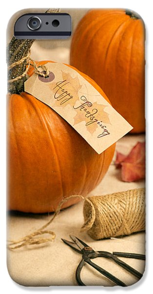 Gourd iPhone Cases - Pumpkins For Thanksgiving iPhone Case by Amanda And Christopher Elwell