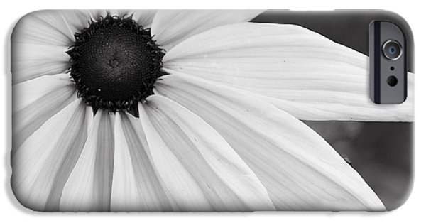 Discernment iPhone Cases - Purity Coneflower iPhone Case by Tirza Roring