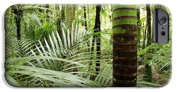 Botany Photographs iPhone Cases - Rainforest  iPhone Case by Les Cunliffe