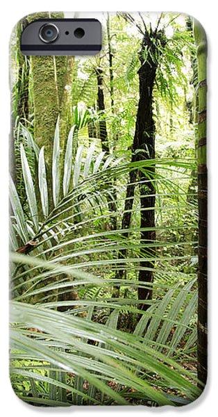 Rainforest  iPhone Case by Les Cunliffe