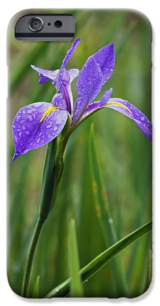 Rainy Day iPhone Cases - Rainy Day Series - Purple Iris IV iPhone Case by Suzanne Gaff