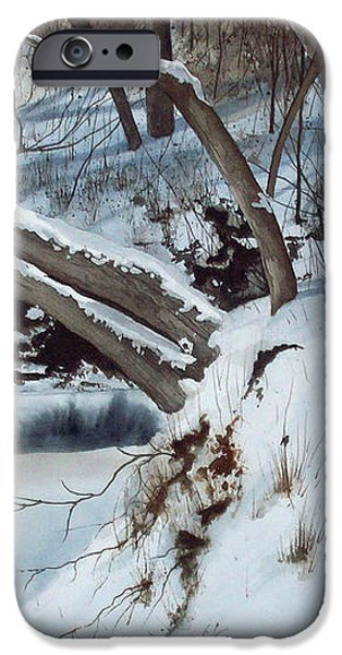 rattlesnake creek iPhone Case by Denny Dowdy