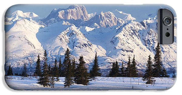 Mooses Tooth iPhone Cases - Recreational Dog Mushing In Denali iPhone Case by Jeff Schultz