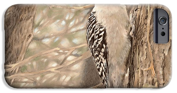 Graphite Drawing Pastels iPhone Cases - Red-bellied Woodpecker iPhone Case by Laurie Musser