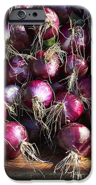 Farm Stand Photographs iPhone Cases - Red Onions iPhone Case by Tony Cordoza