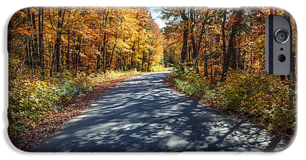 Asphalt Photographs iPhone Cases - Road in fall forest iPhone Case by Elena Elisseeva