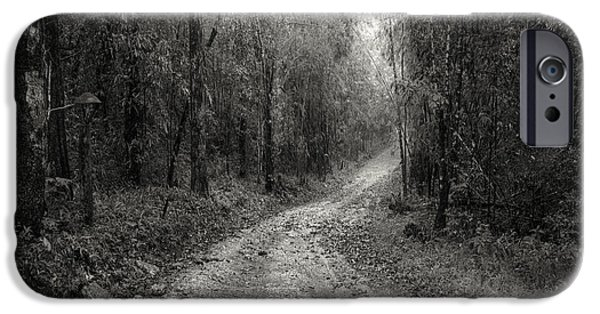 Park Scene iPhone Cases - Road Way In Deep Forest iPhone Case by Setsiri Silapasuwanchai