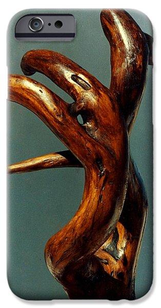 River Sculptures iPhone Cases - Red Cedar Drift iPhone Case by Vincent Von Frese