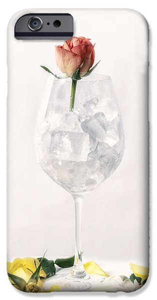 Ice Wine iPhone Cases - Rose On The Rocks iPhone Case by Joana Kruse