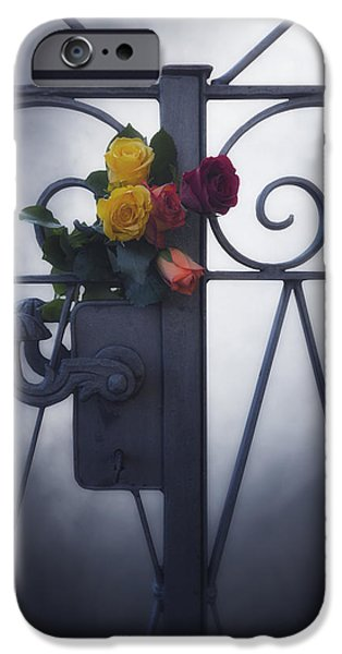 Mourning iPhone Cases - Roses iPhone Case by Joana Kruse