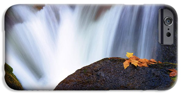 Autumn iPhone Cases - Rush iPhone Case by Mike Dawson