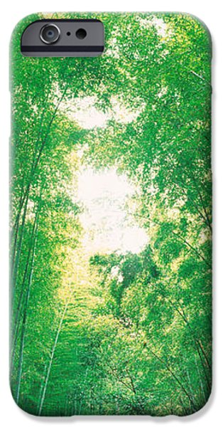 Bamboo Fence iPhone Cases - Sagano Kyoto Japan iPhone Case by Panoramic Images