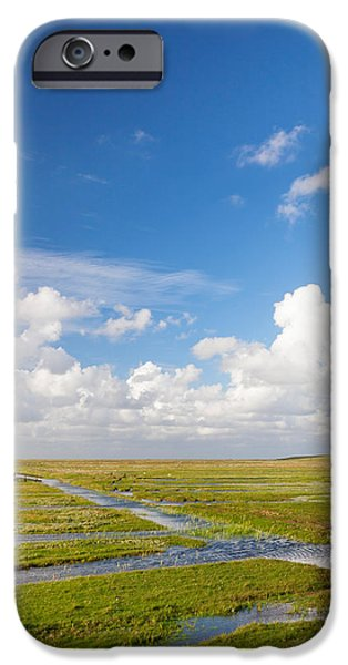 Meadow Photographs iPhone Cases - Salt Meadow At Westerhever, Eiderstedt iPhone Case by Panoramic Images