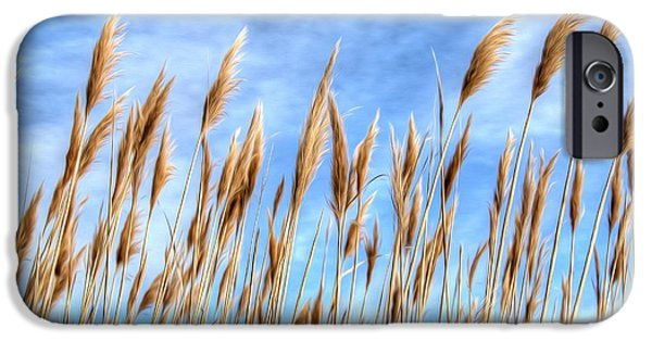 Salt Air iPhone Cases - Sea Breeze iPhone Case by Kelvin Booker