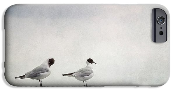 Couple iPhone Cases - Seagulls iPhone Case by Priska Wettstein
