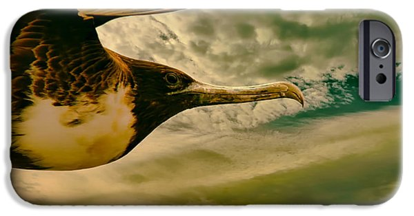 Flying Seagull iPhone Cases - Searching for the Next Meal iPhone Case by Mountain Dreams