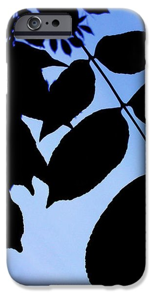Shadows iPhone Case by Lucy D