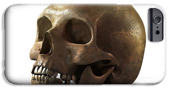 Poison iPhone Cases - Skull iPhone Case by Vitaliy Gladkiy