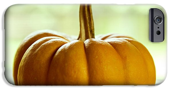 Commercial Photography iPhone Cases - Small Orange Pumpkin iPhone Case by Iris Richardson